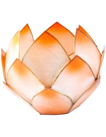 Lotus Crépuscule Mandarine