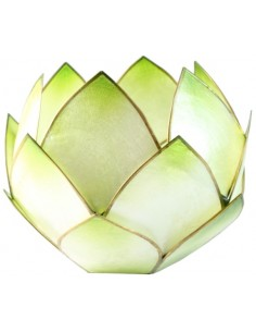 Lotus Crépuscule Vert Lime