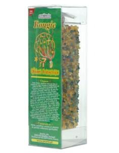 Grande Bougie Plantes Chaînes protectrices