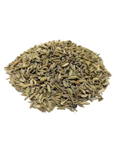 Fenouil (Graines) 50 grs