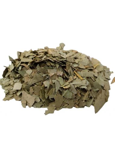 Eucalyptus 30 grs