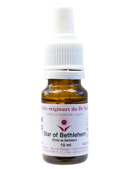 Elixir floral N° 29 Star of Bethlehem Dame de Onze heures