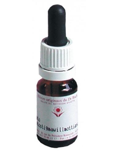 Elixir floral N° 4 Centaury Centaurée