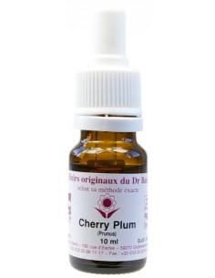 Elixir floral N° 6 Cherry Plum Prunus