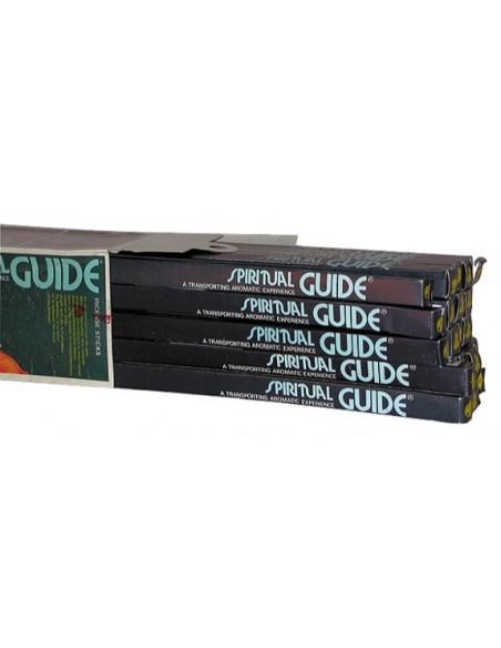 Encens Spiritual Guide - 8 grs - Padmini