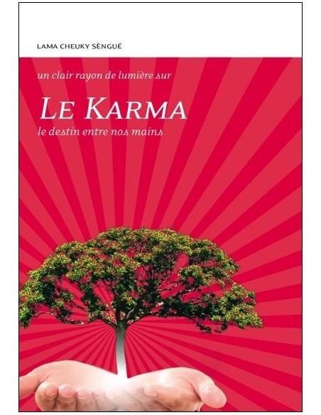 Le Karma, Le destin entre nos mains - Lama Cheuky Sèngué