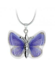 Effet papillon Violet