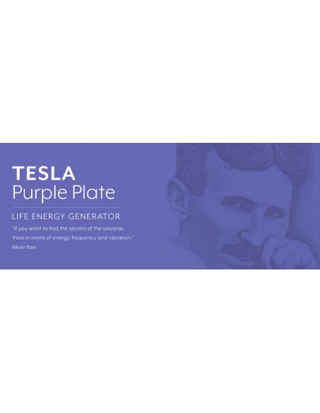 Tesla Générateur d'énergie vitale